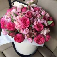 Коробка 15 пионовидных роз и тюльпаны R003