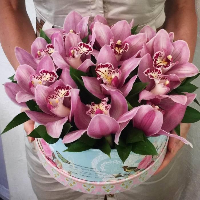 13 розовых орхидей в коробке R019
