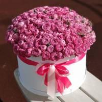 51 кустовая пионовидная роза в коробке R747