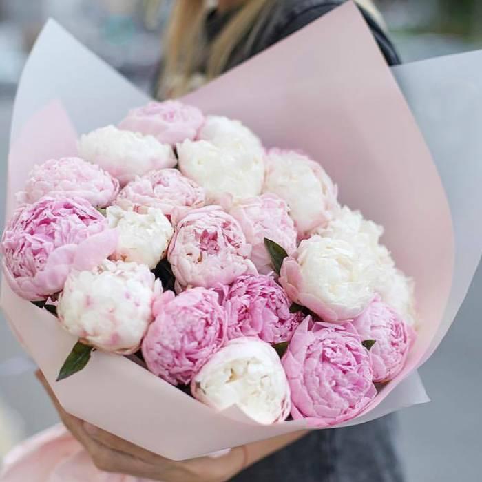 Нежный букет 17 розовых пионов R016